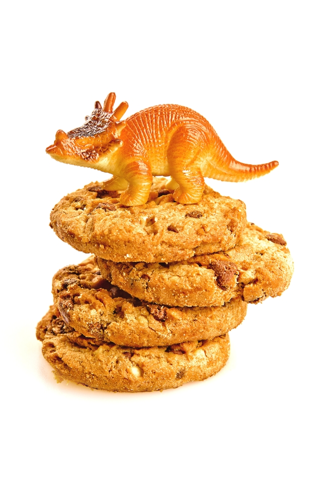 Dino Cookies!